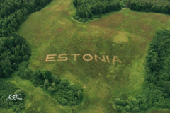 Rally-Estonia2