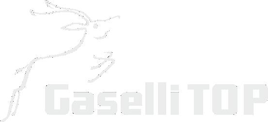 Gaselli märk